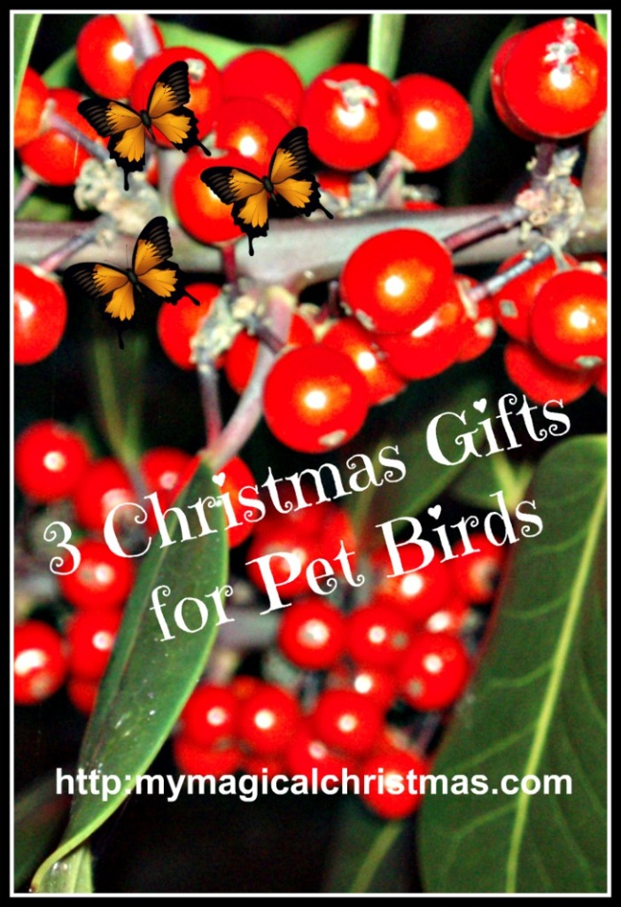 More Gifts for Bird Lovers